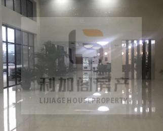 开发区 九龙湖纯商业办公大厦价格含税面议可分割地铁站便