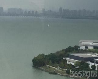 星湖公馆单身公寓 看湖景 地铁二号线 创意产业园 桑田岛