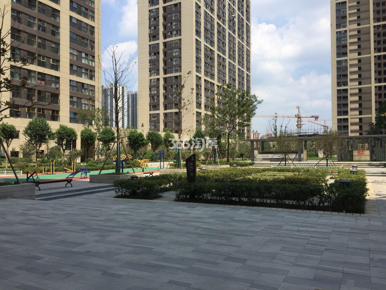 东方万汇城南区小区绿化实景图(7.26)