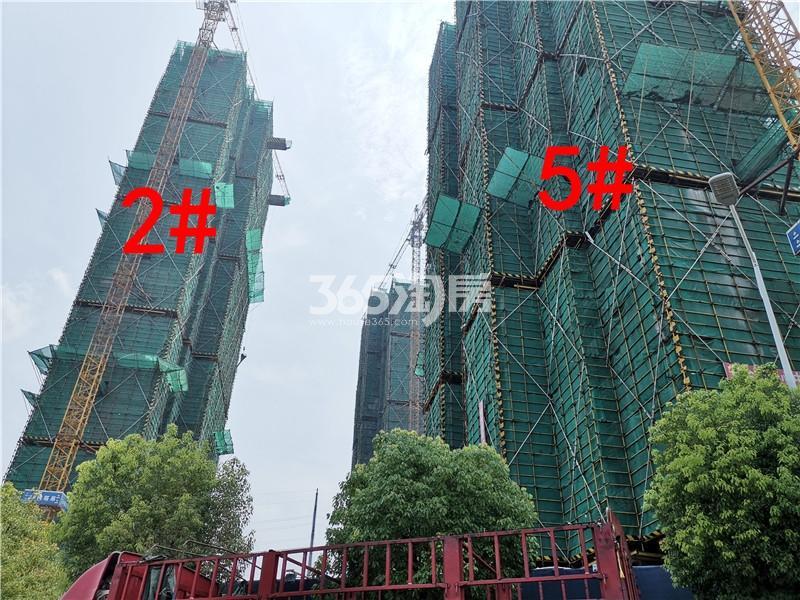 珍宝岛熙悦府在建2、5#实景图(7.26)