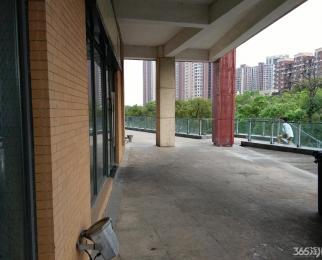 莲花湖畔 金地自在城中心商业街 诚心出租 实用面积大业态