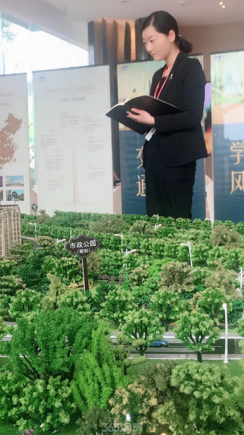 (合景庐月湾置业顾问张娟 365淘房 资讯中心)