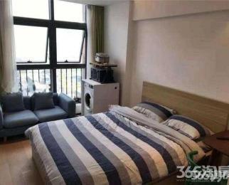 雨花客厅地铁口精装单身公寓 户型方正 朝南 拎包入住可办
