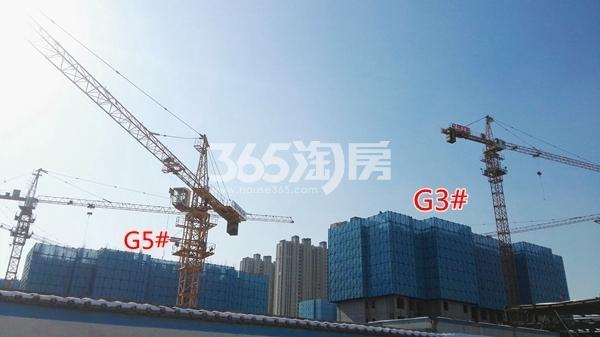 万科翡翠天御高层3#楼、5#均建至5层以上(1.15)