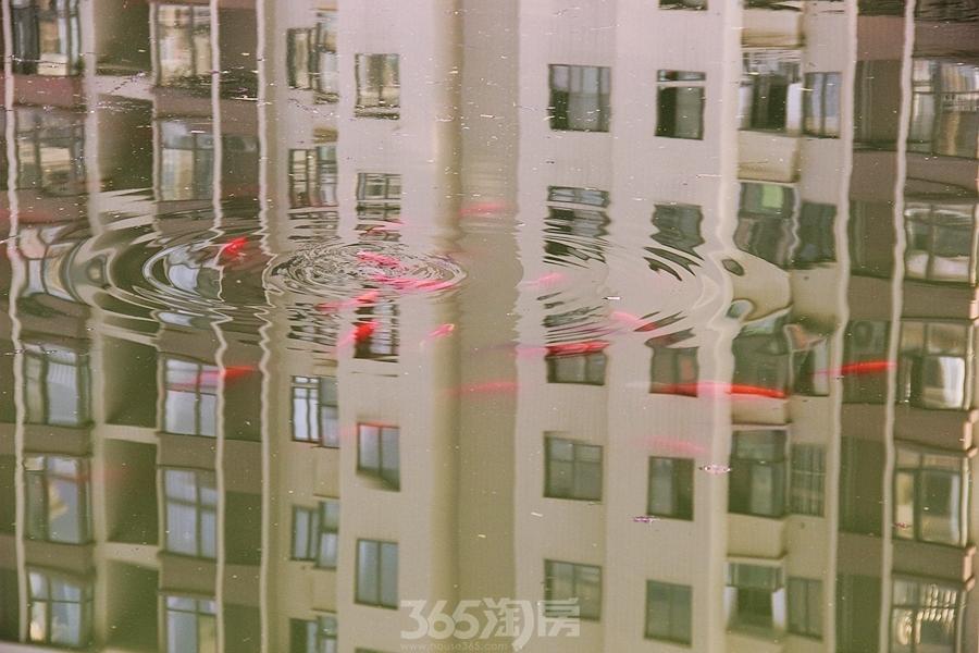 三潭音悦园林实景图-湖面(2018.3摄)