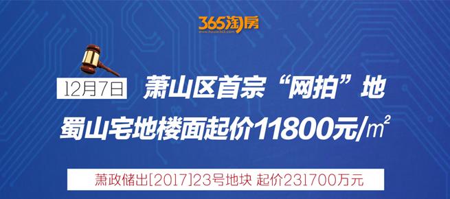 """12.7萧山首宗""""网拍""""地"""