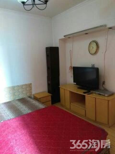 丰家兜1室1厅1卫28平米整租中装