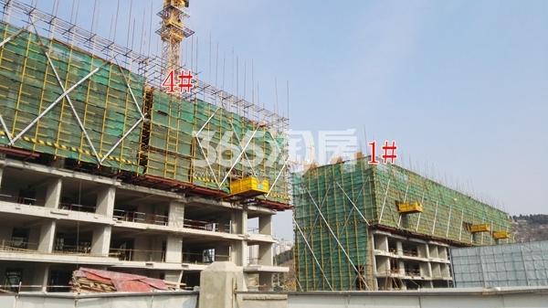 中海熙岸华府1、4#洋房在建实景(12.5)