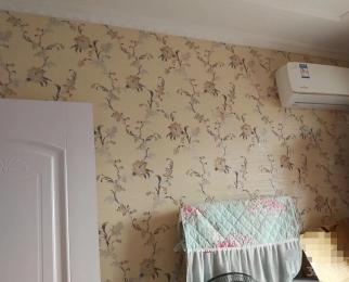 石化菱北生活区2室1厅1卫62平米2001年产权房豪华装