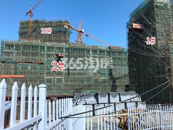 恒大御峰高层10#楼,洋房1#、2#实景图(2018.3 摄)
