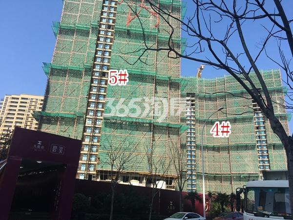 九龙仓碧玺高层4#、5#楼实景图(2018.3 摄)
