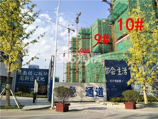 珍宝岛熙悦府3、9、10#楼实景图(9.25)