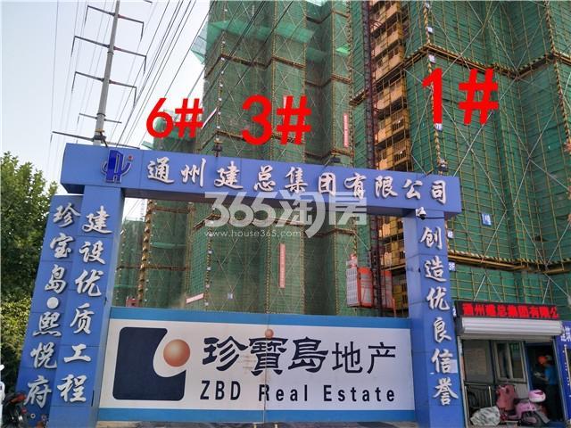 珍宝岛熙悦府1、3、6#楼实景图(9.25)