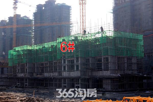 信德悦城6#楼工程进度