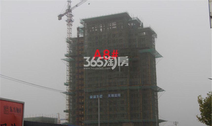 东方樾府A8#工程进度实景图(10.30)