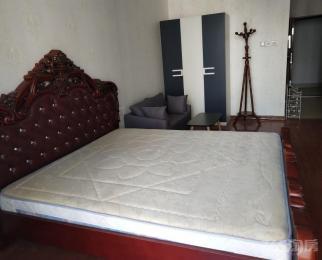 世纪金源酒店公寓1室1厅1卫53平米整租精装