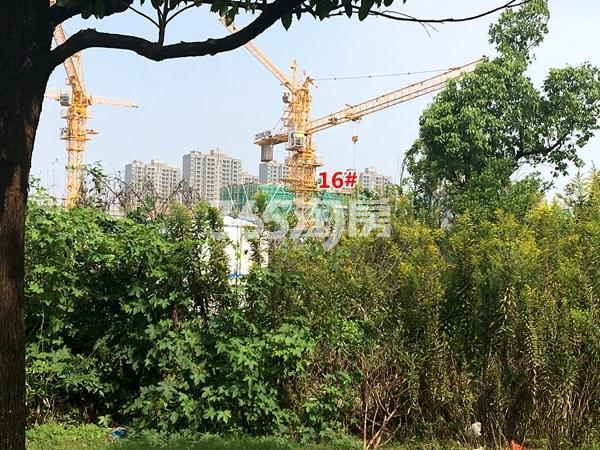 中锐星公元16#楼工程进度实景图(2017.10摄)
