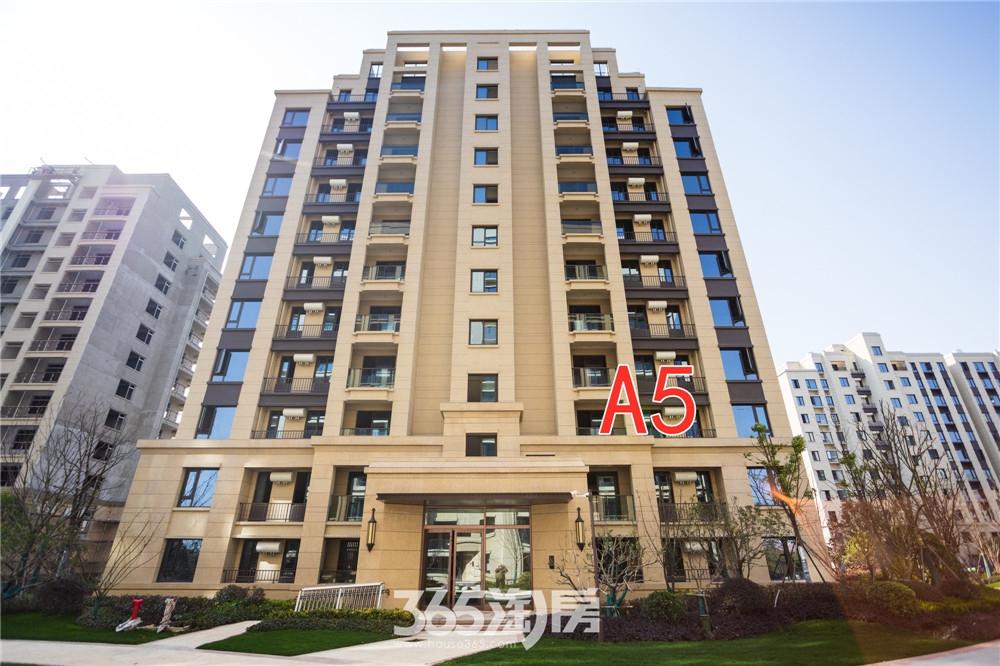 汀海壹品A5#工程进度:一期楼栋正在进行室内质量消缺,分户验收准备(2020.3摄)