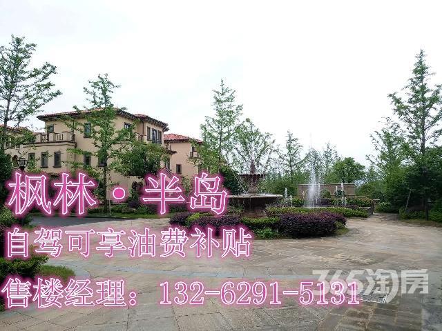 枫林半岛3室2厅1卫100�O2010年满两年产权房毛坯