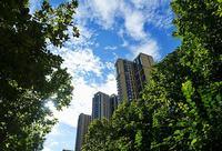 高清|华侨城天鹅堡五期精装社区即将面市 实景园林精彩赏析