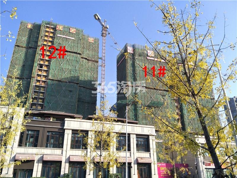 珍宝岛熙悦府11、12#楼工地实景图(1.24)