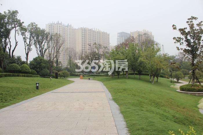 德杰国际城项目园林实景(2017.12.11)